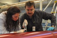 Dr. Cora Thiel and Prof. Oliver Ullrich salvage DNA molecules from the outer shell of the payload section of the TEXUS rocket.