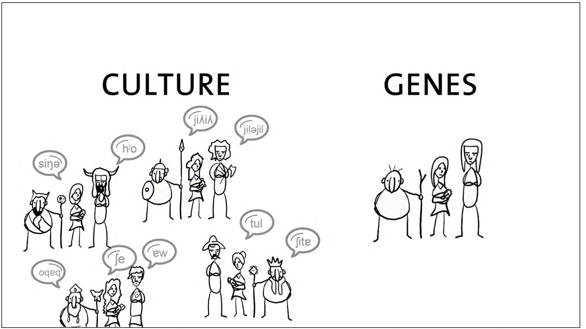 Culture and Genes