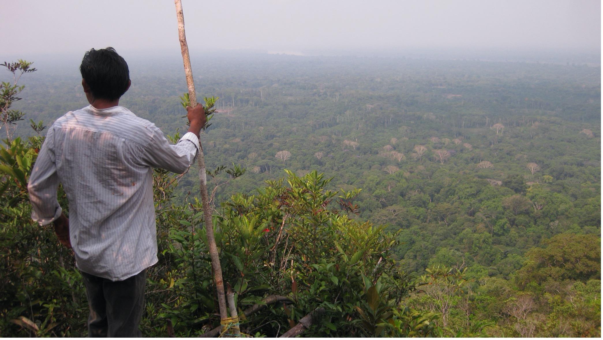 Um homem Yucuna olhando para as Terras Indígenas na floresta amazônica, onde muitas línguas estão previstas para serem extintas até o final do século 21. Foto: Rodrigo Cámara-Leret
