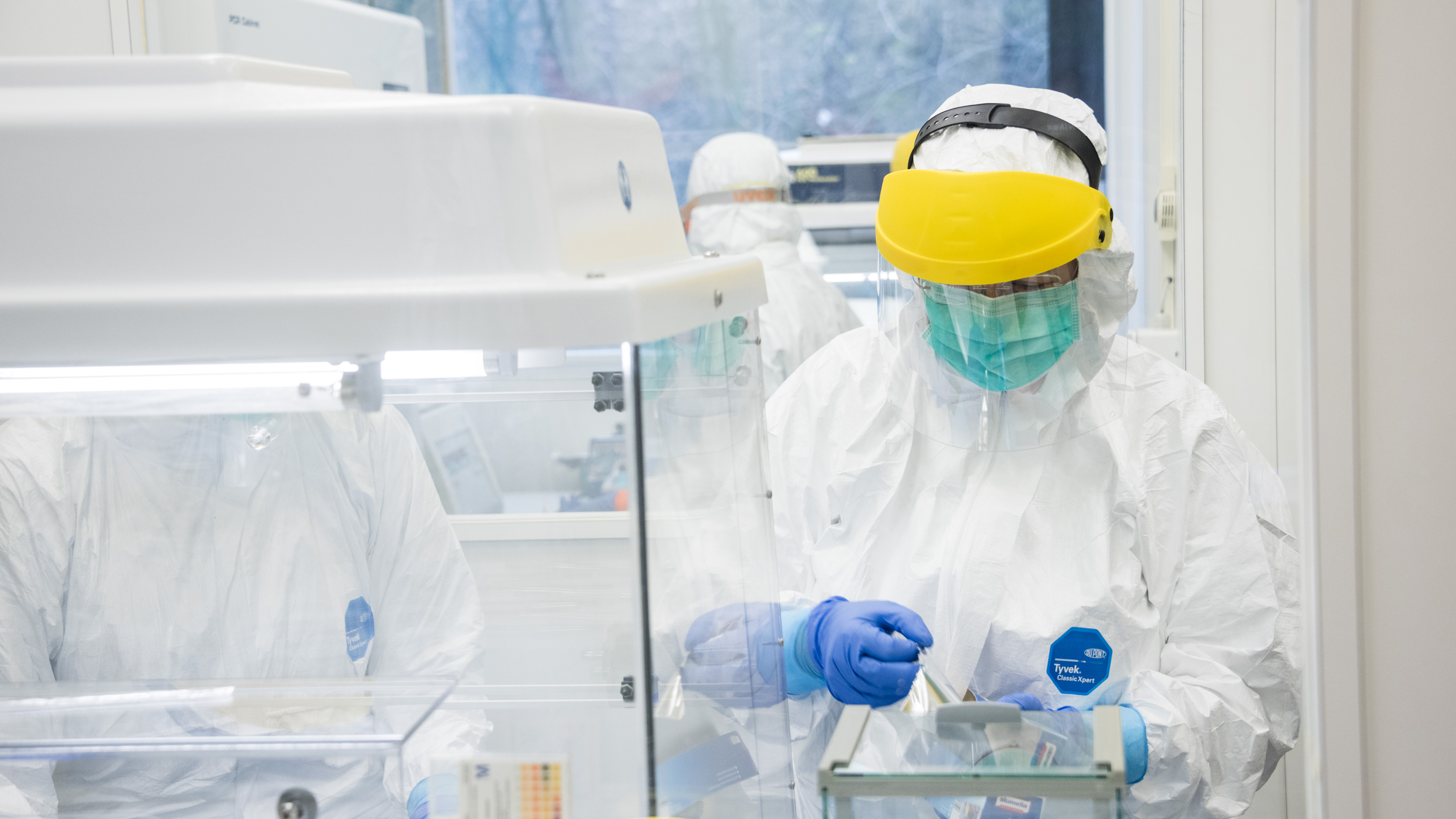 In the UZH clean room, DNA samples from skeletons are examined for old bacterial genomes. (Picture: UZH)